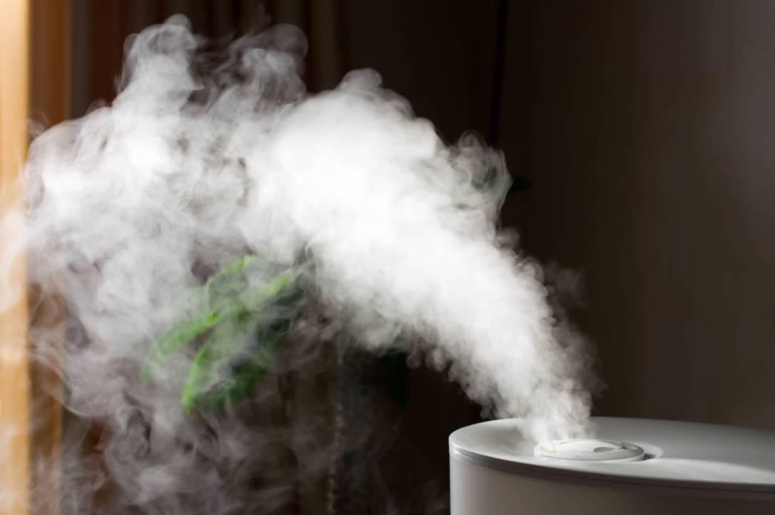 248970-confira-x-dicas-para-melhorar-a-umidade-do-ar-da-sua-casa